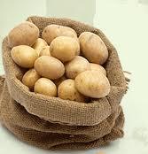 Dondan zarar g�ren patates �reticisine devlet deste�i