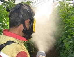 Bitki koruma ürünleri kontrol yönetmeliğinde değişiklik yapıldı