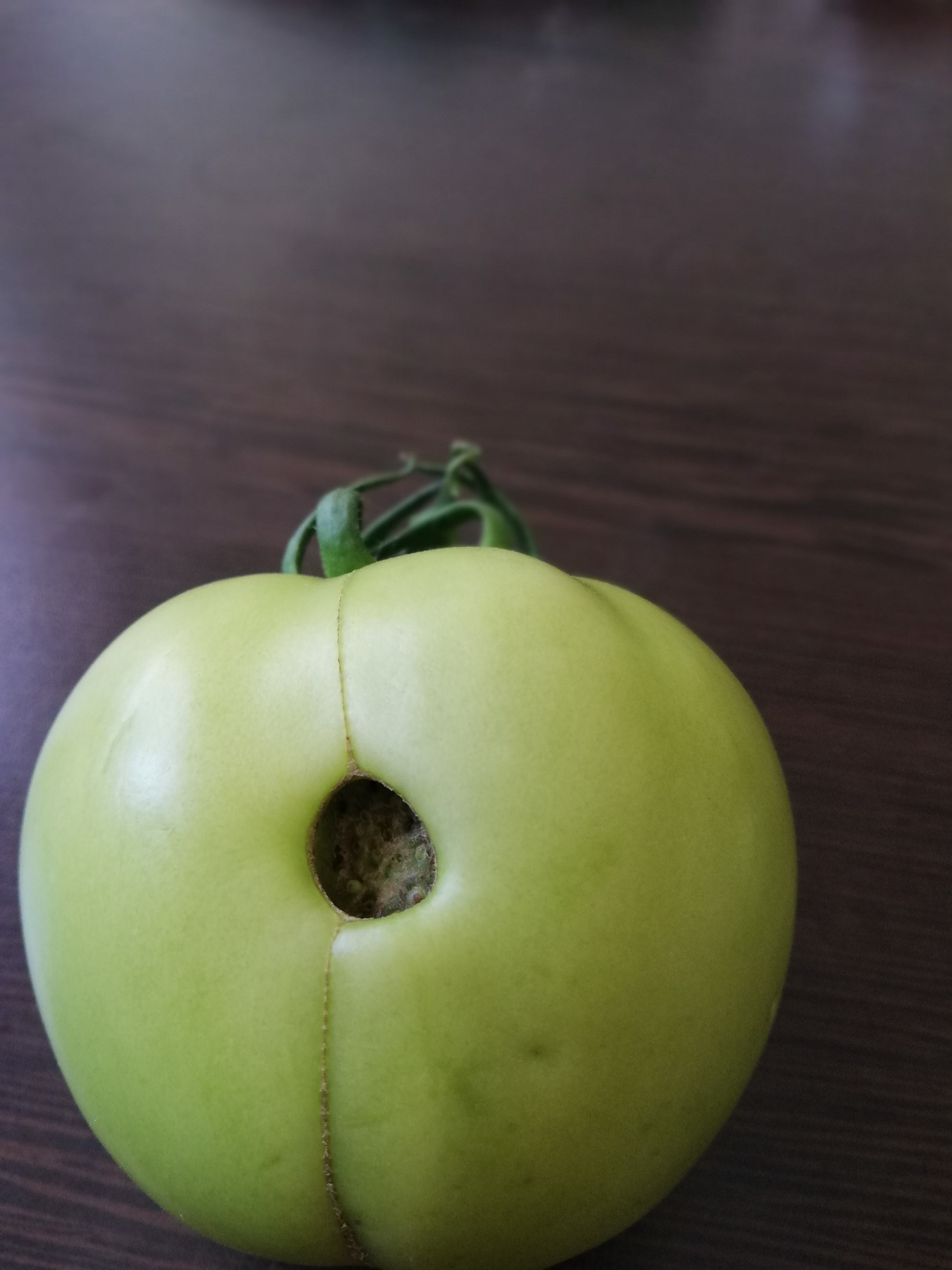tomatoes catfacing