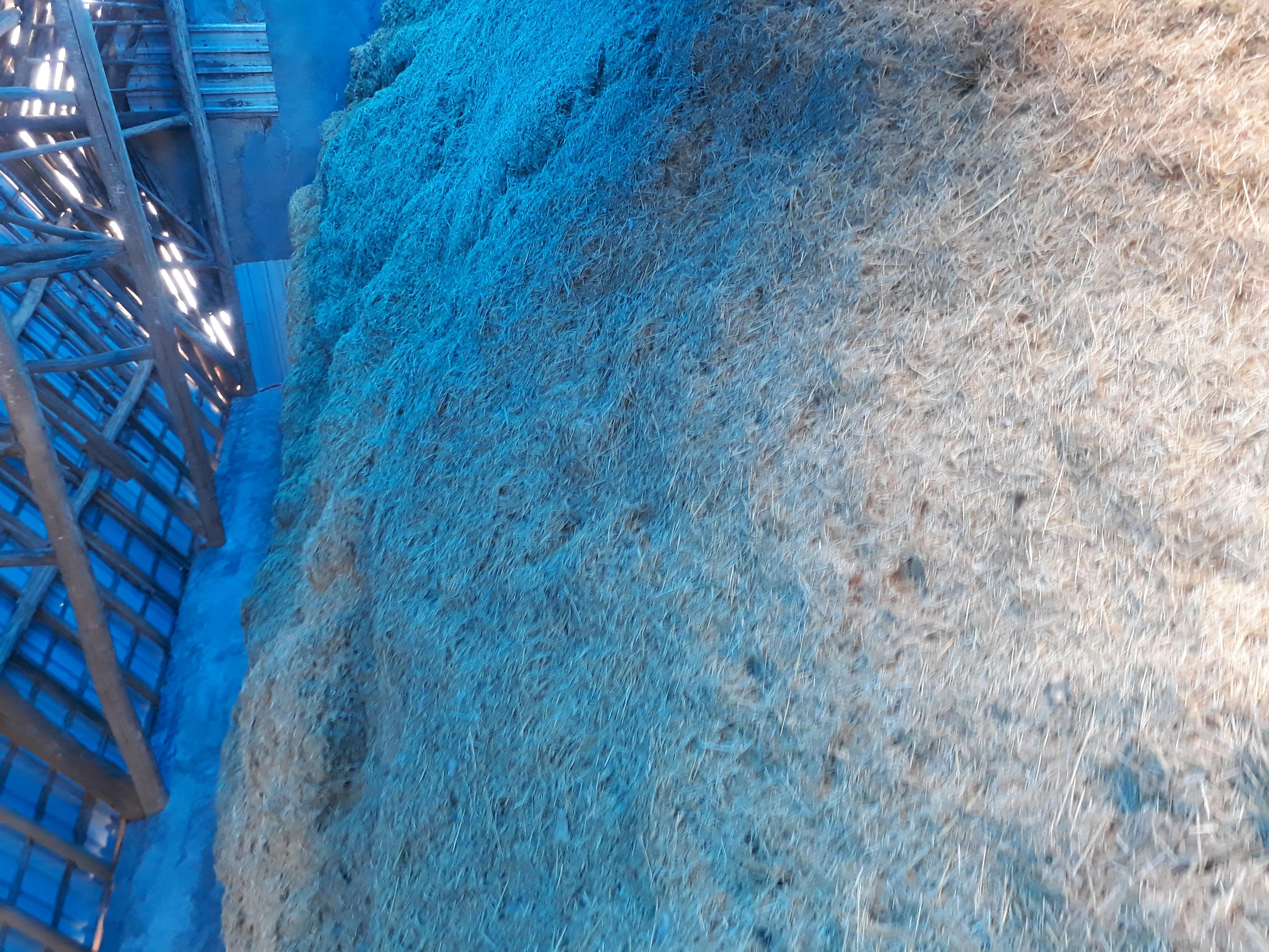 Kütahya Merkez Satılık Buğday samanı