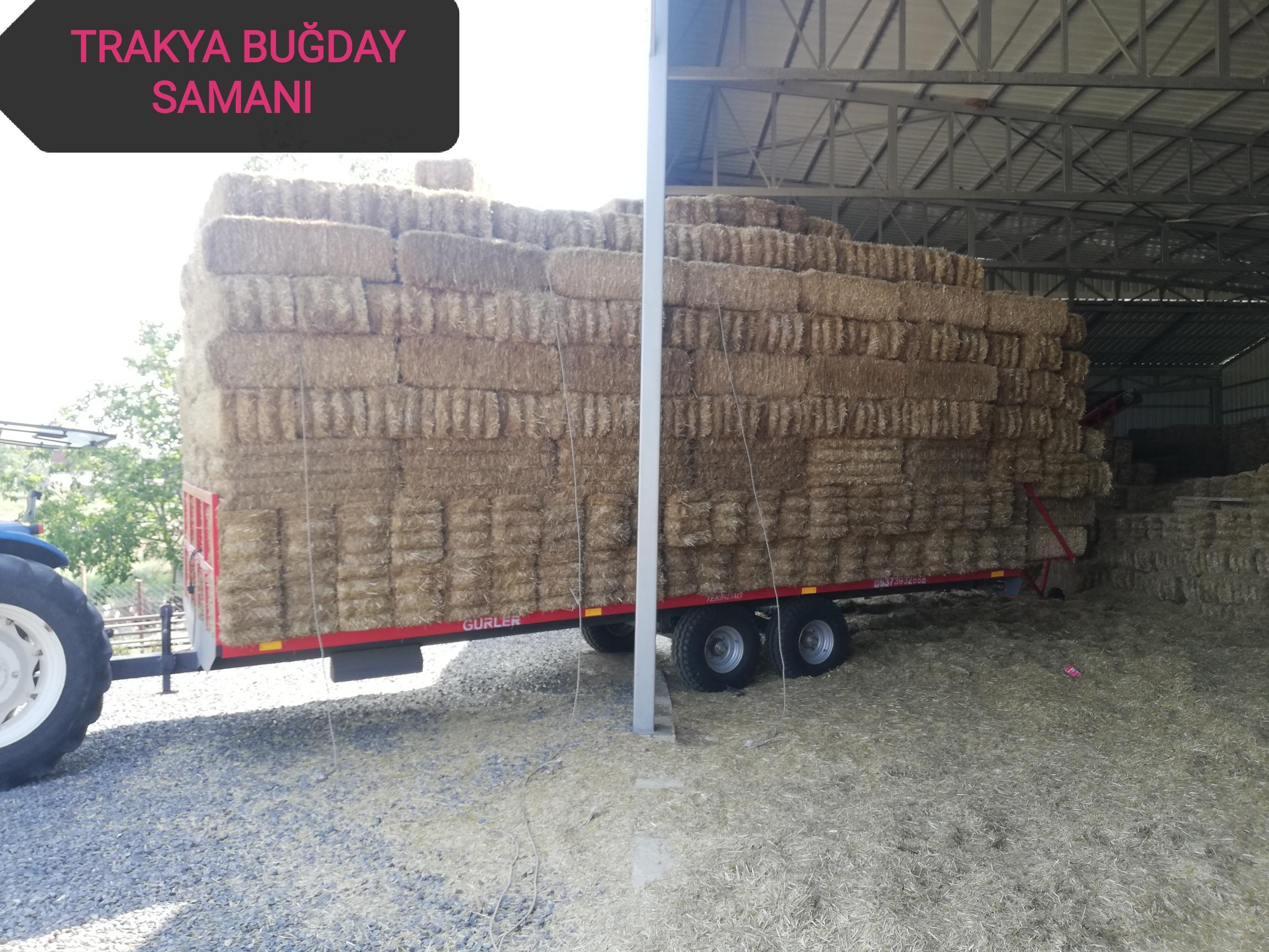 Tekirdağ Süleymanpaşa Satılık Buğday samanı