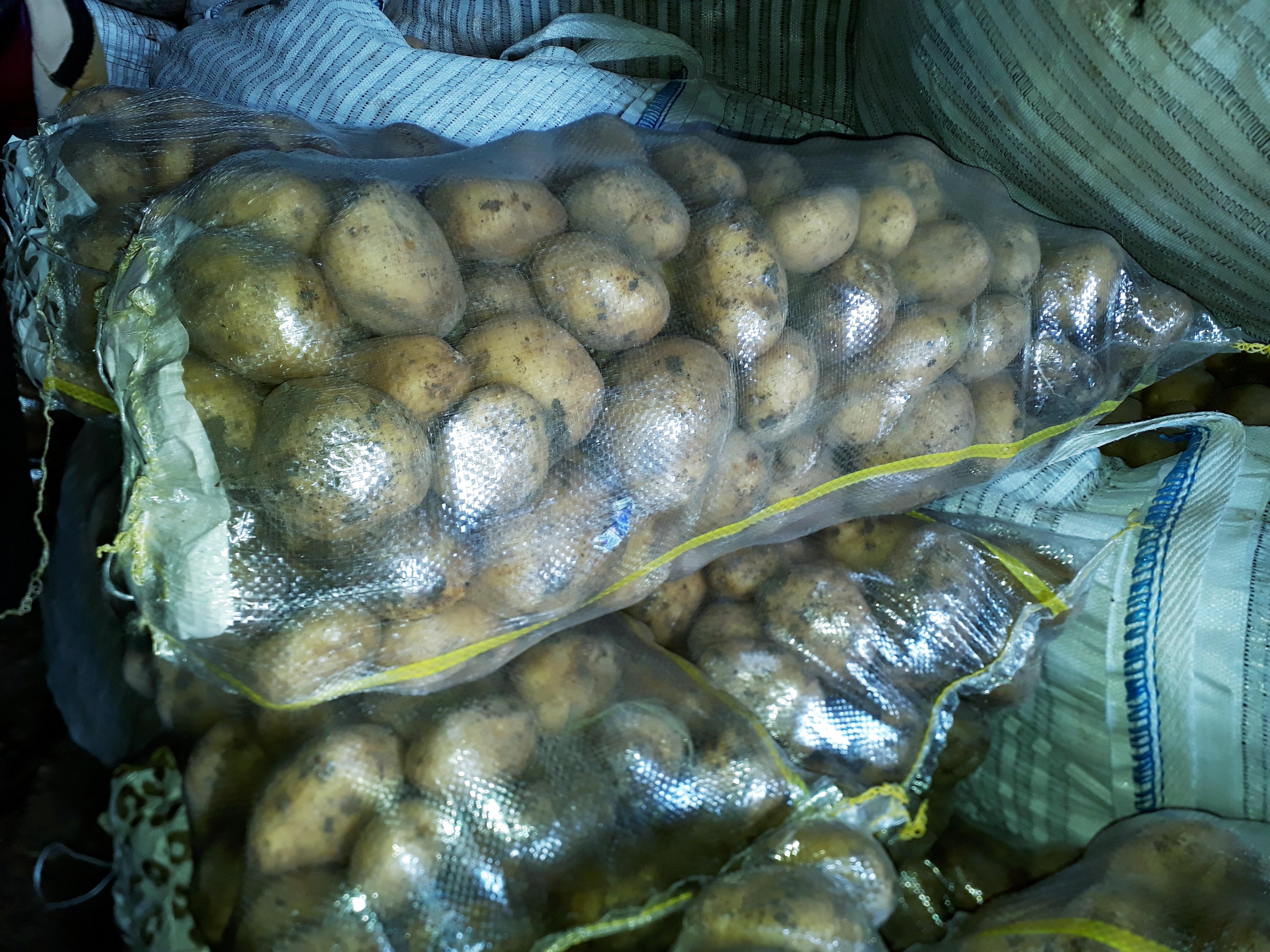 Bitlis Ahlat Satılık Patates