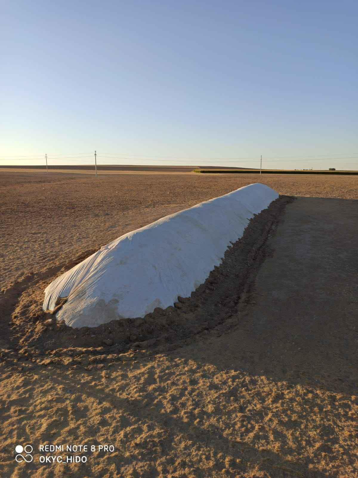 Konya Karapınar Satılık Buğday samanı