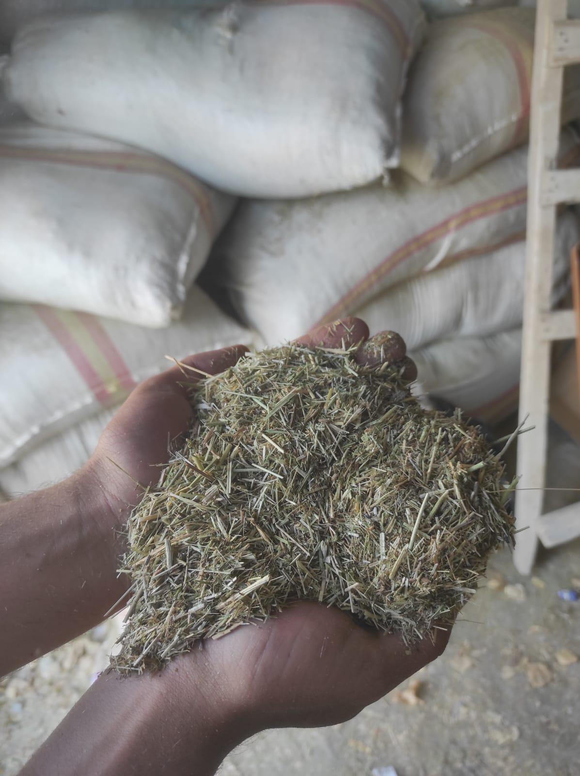 Bakla samanı - Üretici Diyar Karaka 1850 tl fiyat ile 18.000 kilogram bakla samanı  satmak istiyor