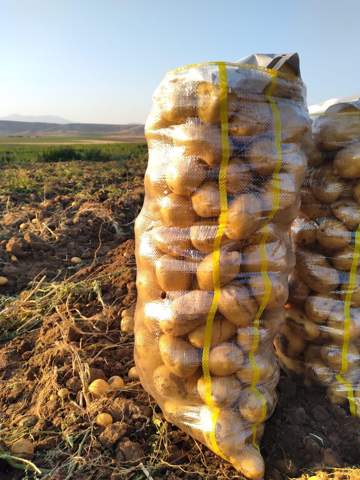 Niğde Merkez Satılık Patates