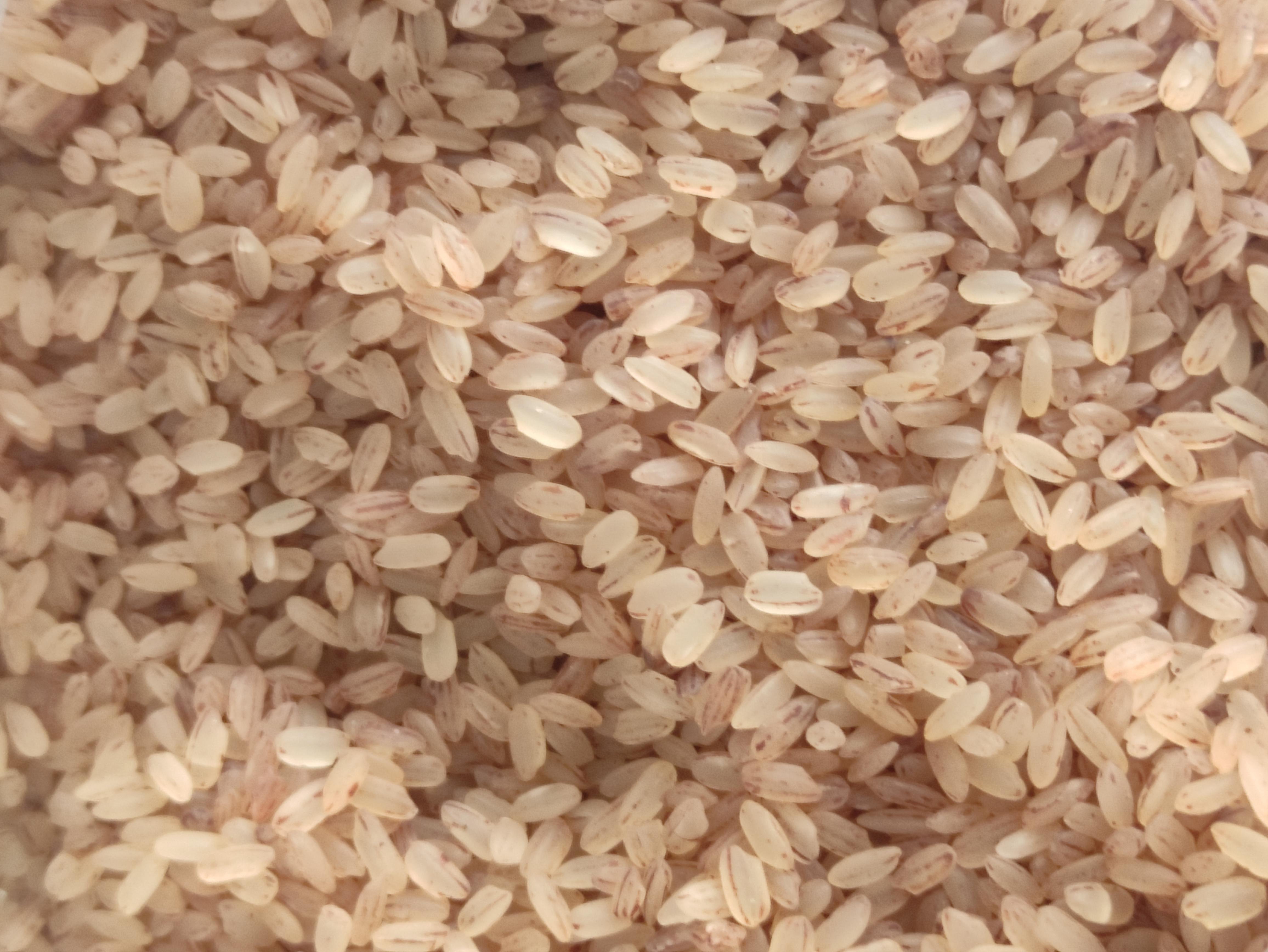 Pirinç - Üretici Mehmet Baran Aslan 7 tl fiyat ile 200.000 kilogram pirinç  satmak istiyor