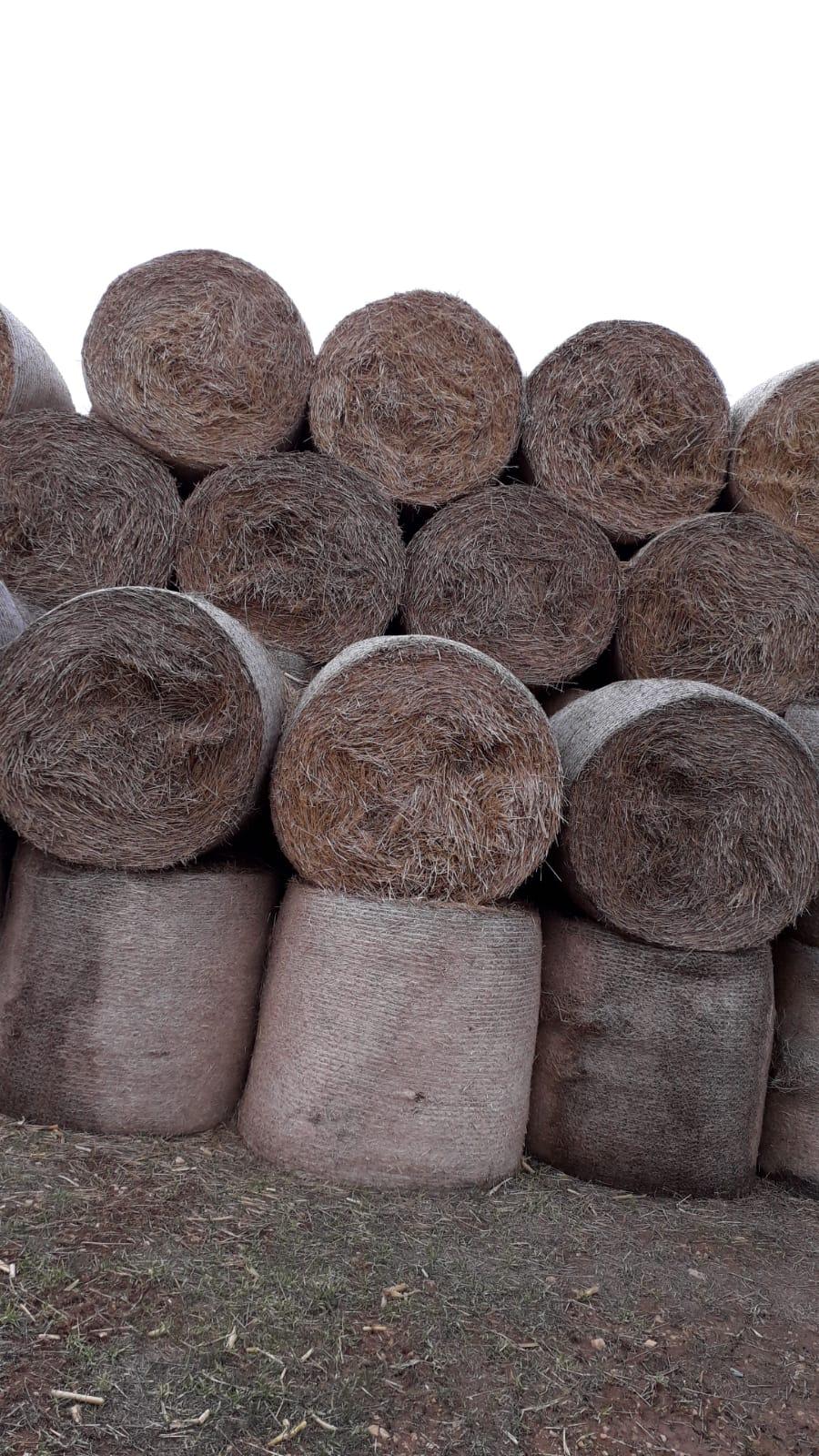 Buğday samanı - 2018 Mahsülü 180 Kg Ağirliğinda Yuvarlak Balyali 700 Ton Sap Satişimiz Mevcuttur Nakliye Hariçtir