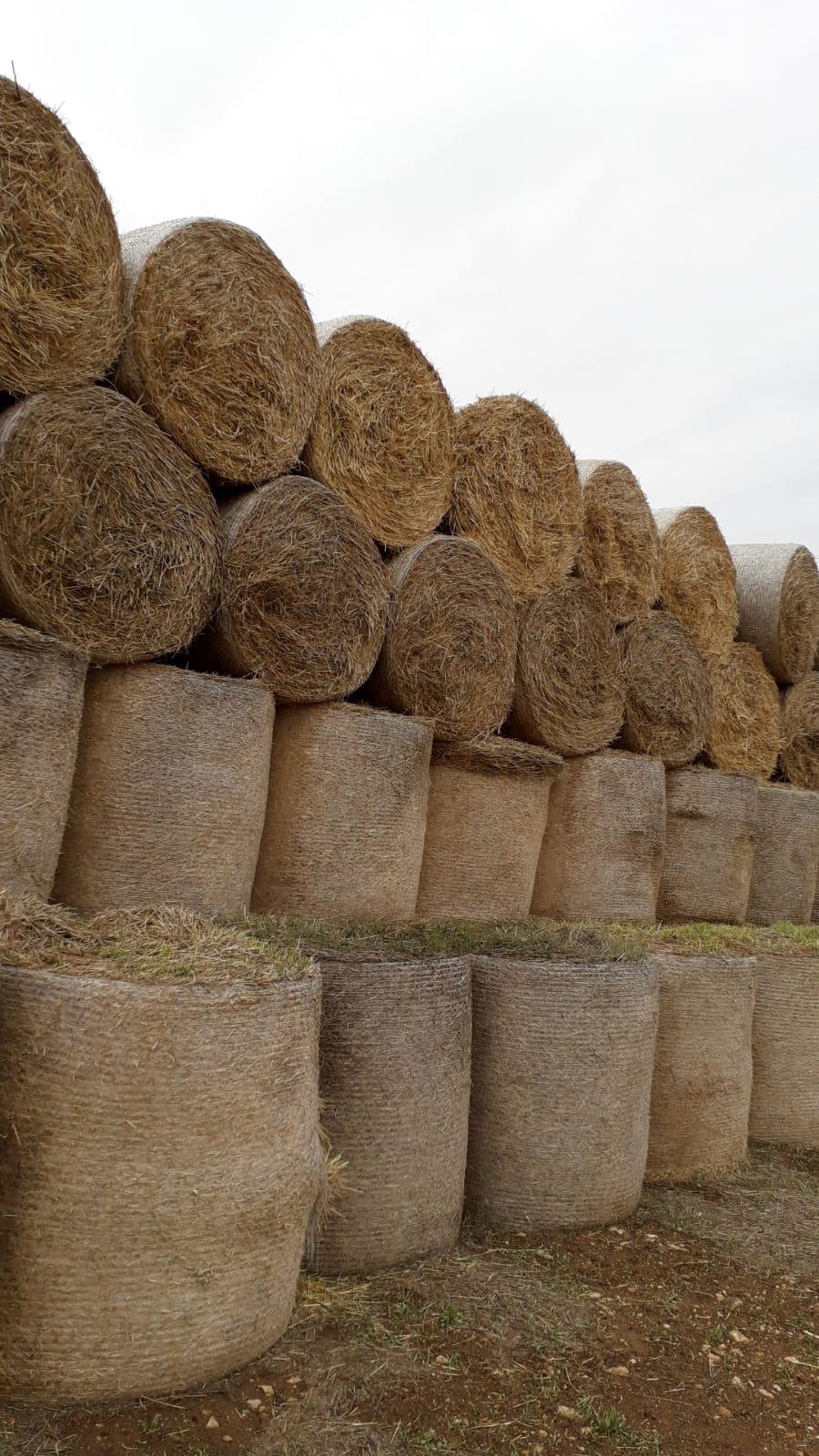 Satılık Buğday samanı - 3462