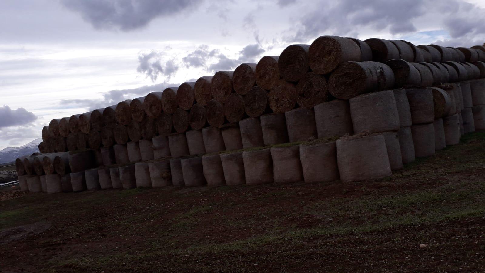 Satılık Buğday samanı - 3463