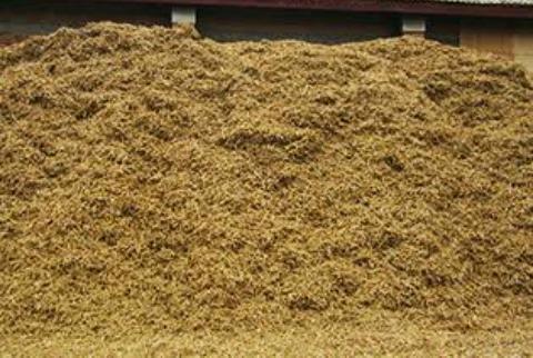 Buğday samanı - Buğday Samanı Tonu 475 Tl Dir Iletişim E Posta Adresinden Yazabilirsin Hemen Teslim Yapılır Kaç