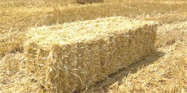 500 Arpa Balyasi 800 Buğday Balyasi resimi fotoğrafı