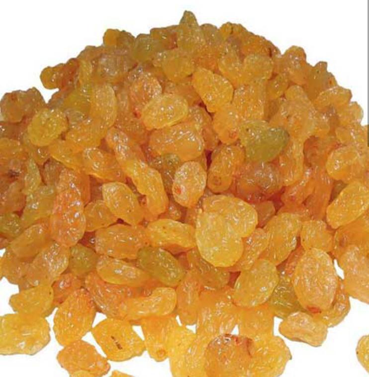 Üzüm - Üretici Muhammed Tohumcu 0 tl fiyat ile 1 kilogram üzüm  satmak istiyor