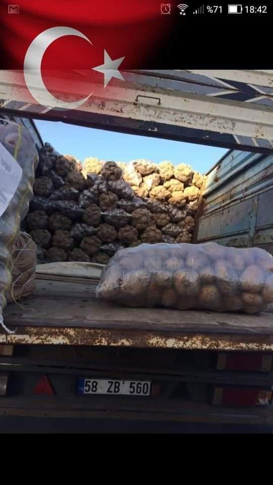 Patates - Üretici Salim Karakuş 60 tl fiyat ile 30 kilogram patates  satmak istiyor