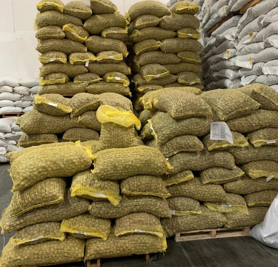 Ceviz - Üretici Sami Bayram 11 tl fiyat ile 24.000 kilogram ceviz  satmak istiyor