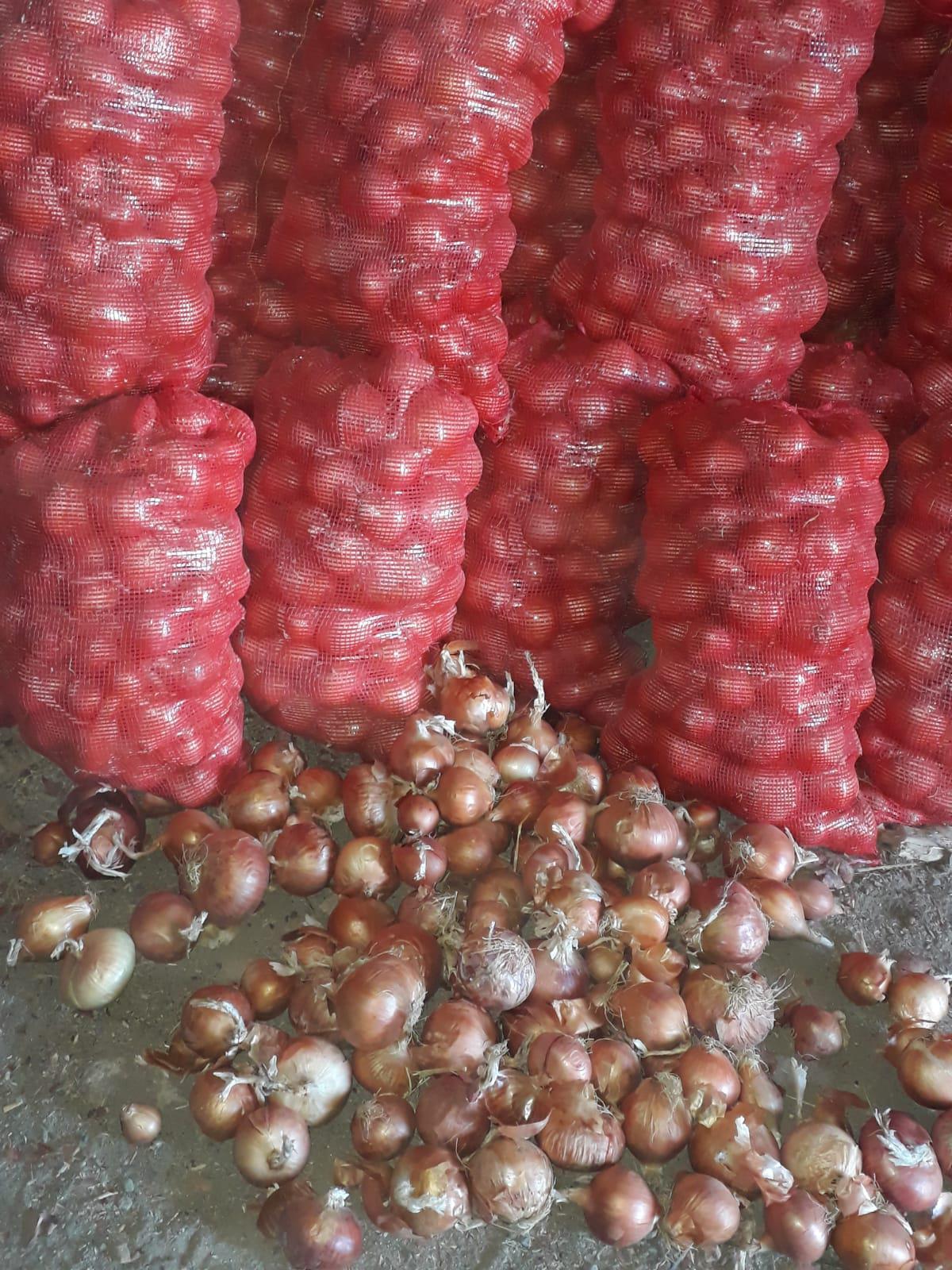 Kuru Soğan - Üretici Kamil Şahin 11111 tl fiyat ile 20.000 kilogram çorum çeşidi kuru soğan satmak istiyor