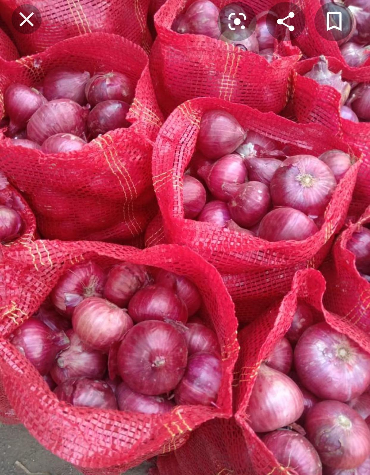 Kuru Soğan - Ömer Adil Sağlam 30.000 kilogram kuru soğan almak istiyor