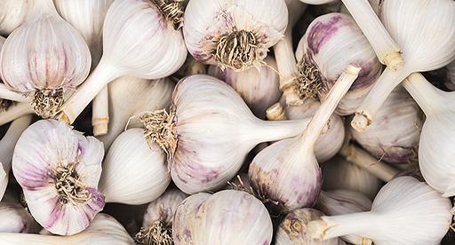 Sarımsak tohumu - Üretici Kadir Engin 12 tl fiyat ile 5 kilogram alata 1 çeşidi sarımsak tohumu satmak istiyor