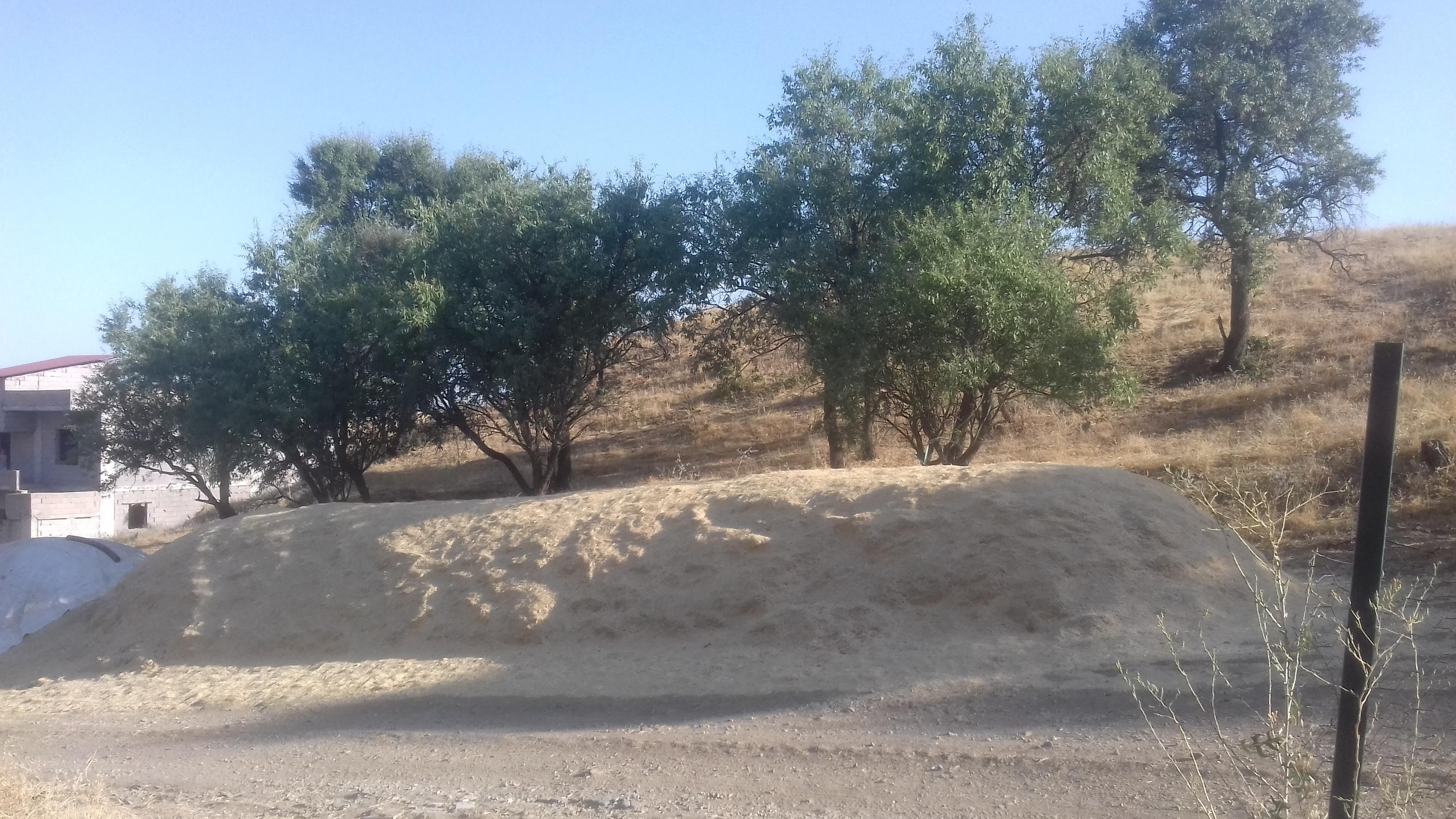 Buğday samanı - Üretici Yılmaz Ergun 750 tl fiyat ile 30 kilogram buğday samanı  satmak istiyor