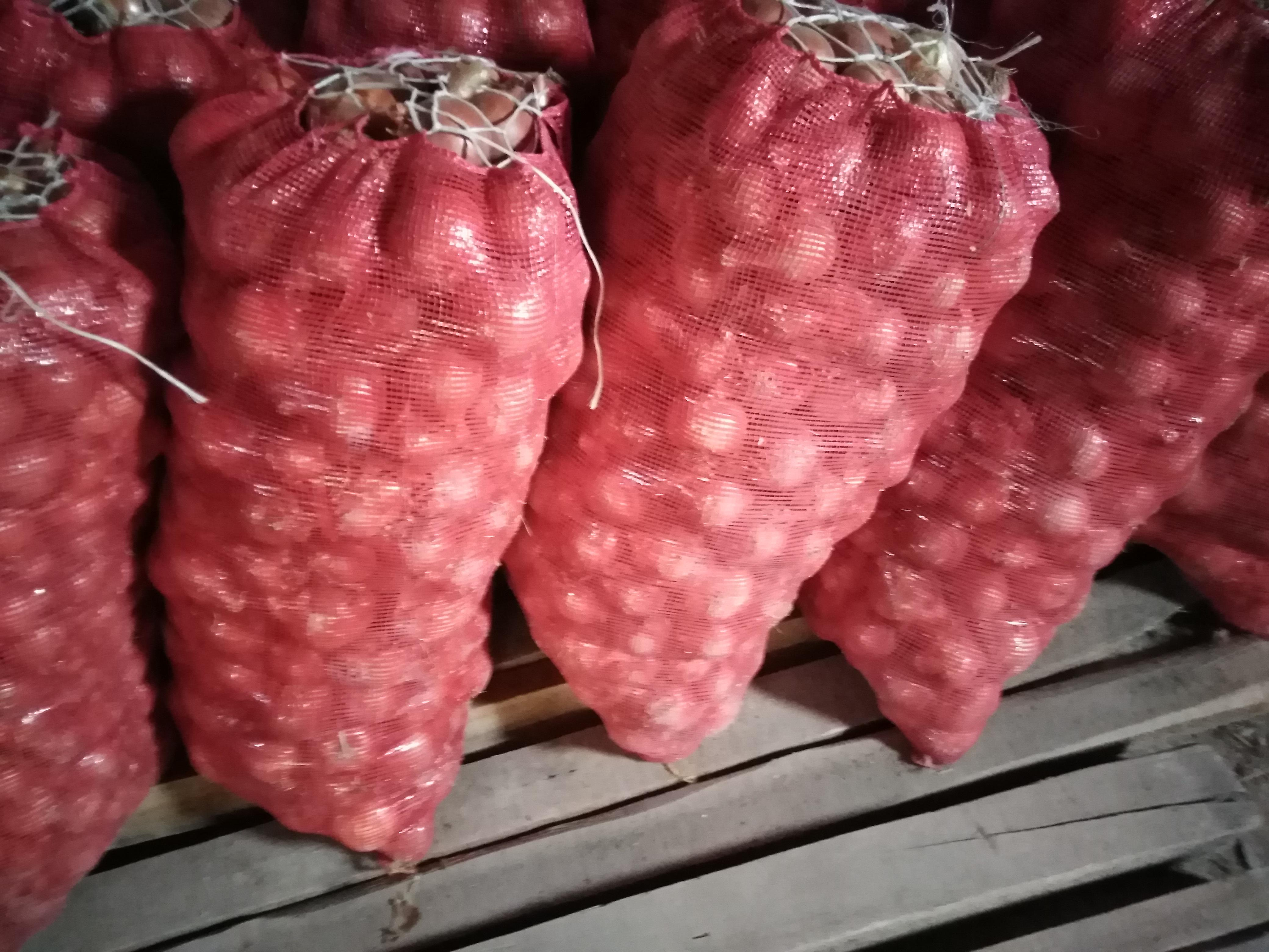 Kuru Soğan - Üretici Yakup Aksoy 1.2 tl fiyat ile 32.000 kilogram soçi 16 çeşidi kuru soğan satmak istiyor