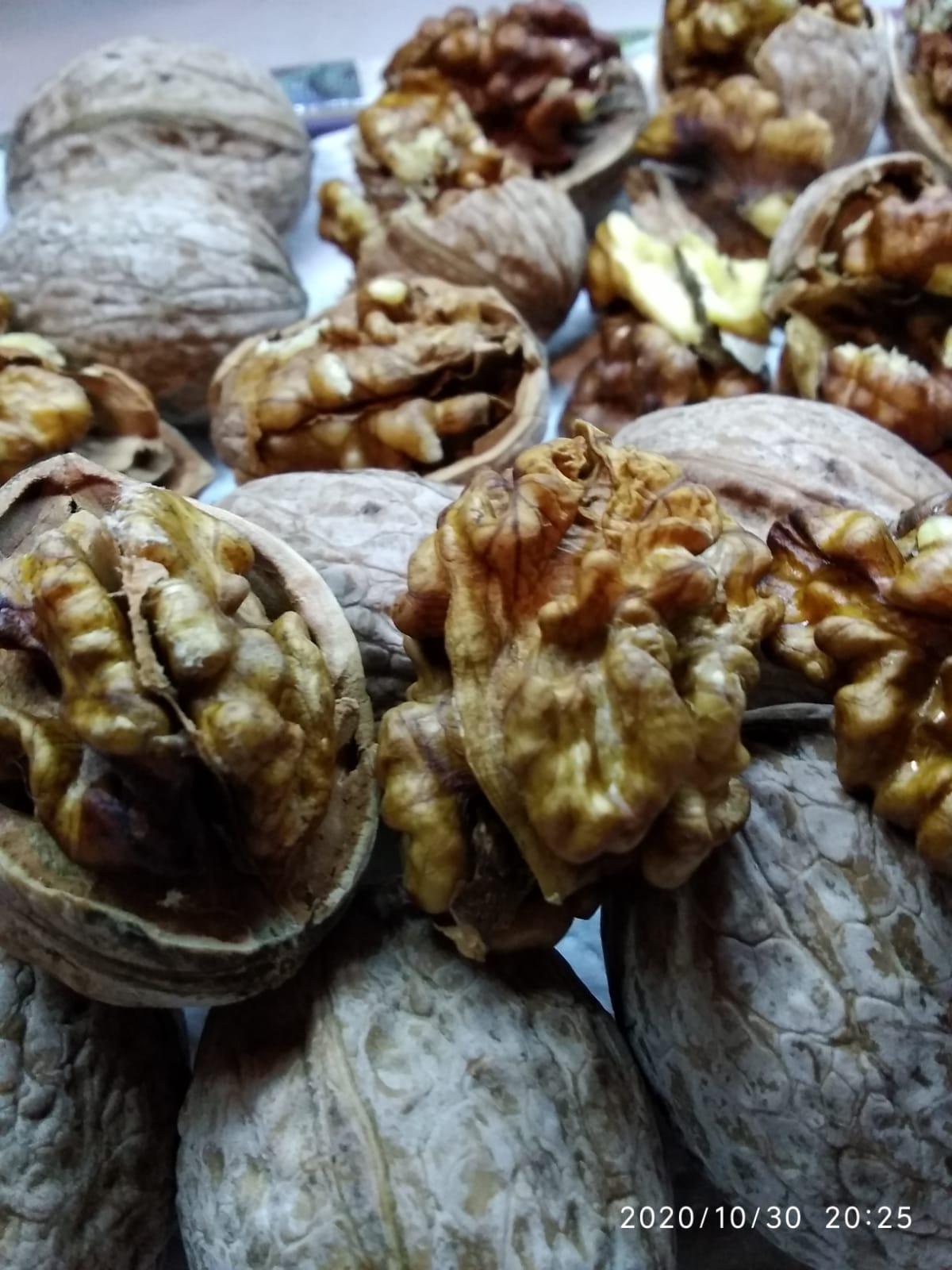 Ceviz - Üretici Hasan Doğan 25 tl fiyat ile 200 kilogram yalova-1 çeşidi ceviz satmak istiyor