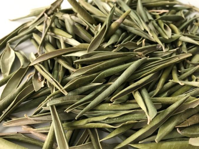 Zeytin yaprağı - Üretici Firat Serbes 10 tl fiyat ile 2.000 kilogram zeytin yaprağı  satmak istiyor