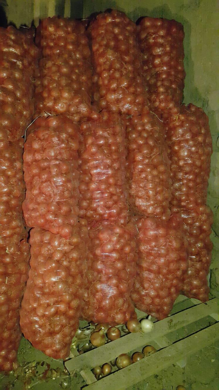 Kuru Soğan - Üretici İsmail Bilen 1450 tl fiyat ile 150 kilogram kuru soğan  satmak istiyor
